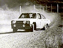1977_002_Ari_Vatanen_-_Jim_Scott2C_Ford_Escort_RS18002C_2nd6.jpg