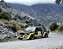 1979_003_001_Antonio_Zanini_Rally_RACE_2825581395454197761_o.jpg