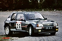 1986_015_026_Panic_-_Dominique_Bouteloup2C_Peugeot_205_Turbo_162C_15th_28129.jpg
