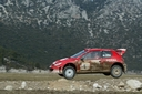 2003_009_peugeot_206wrc2003_turkey_mg_04.jpg